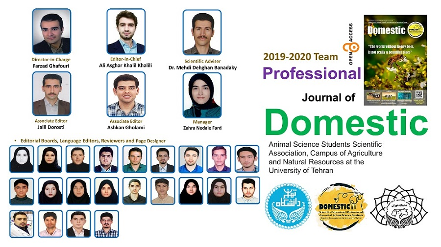 The Professional Journal of Domestic won an award at the Festival of HARKAT, University of Tehran (Feb 2021)